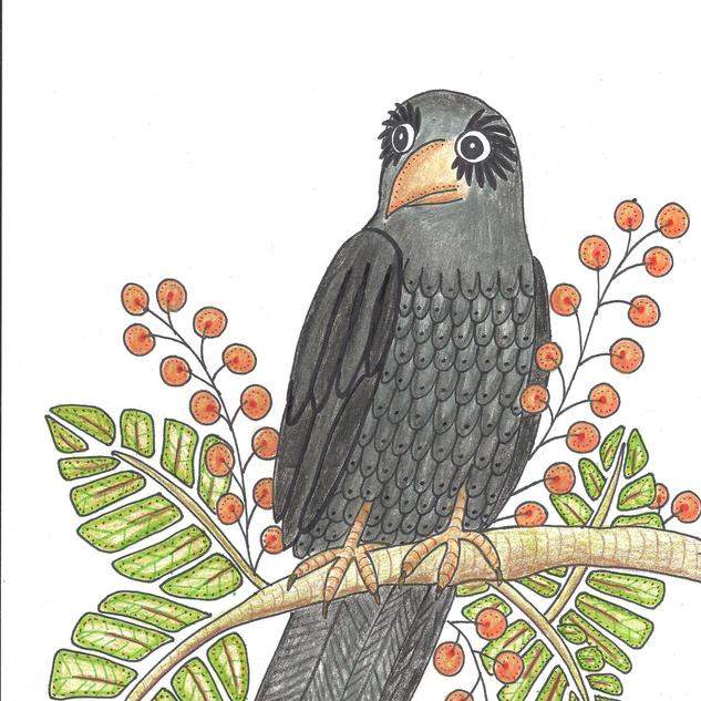 crow2.png