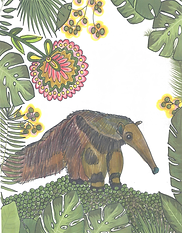 anteater1.png