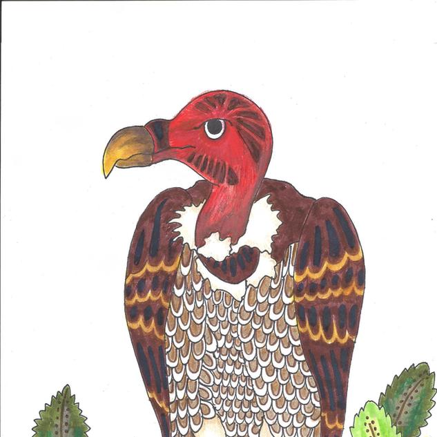 vulture2.png