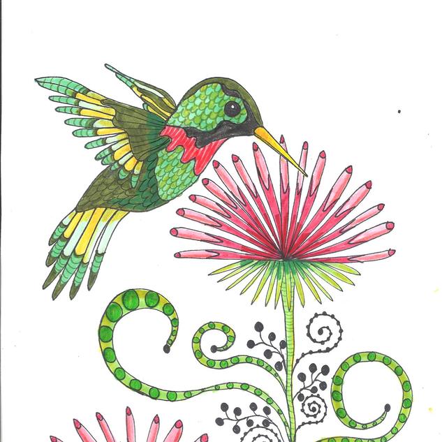 hummingbird2.png