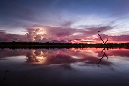Lily Creek Storms