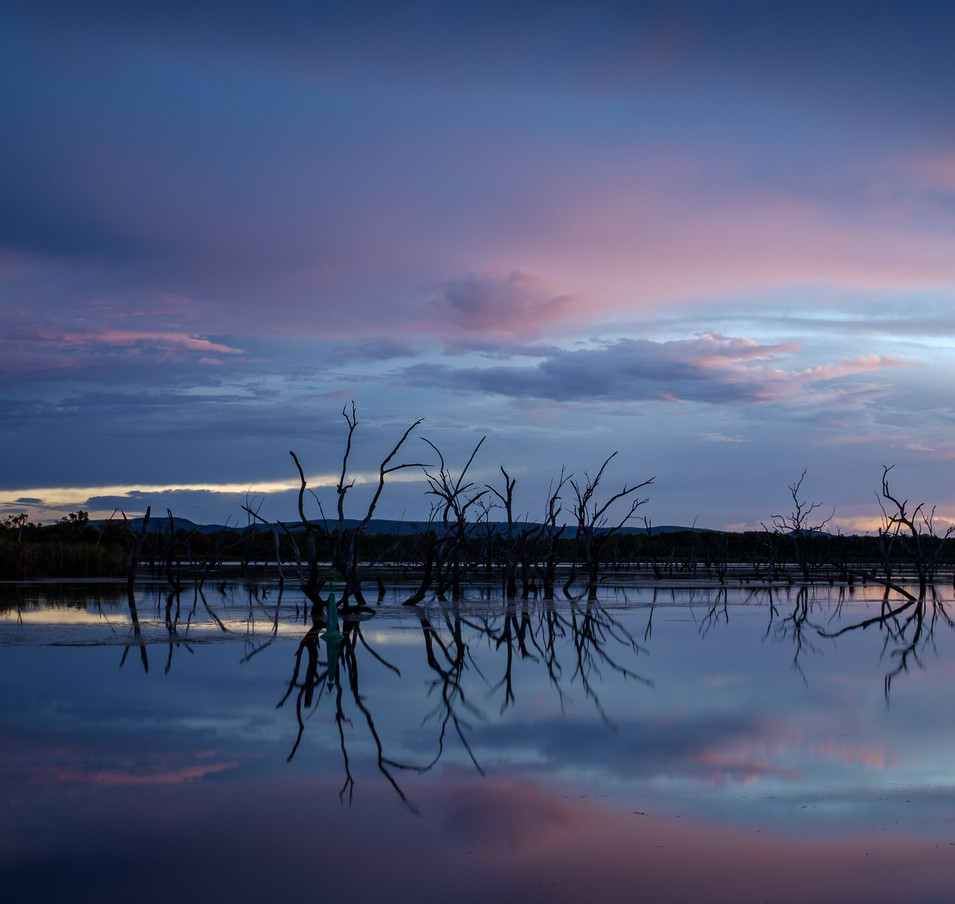 Lily Creek Refelections