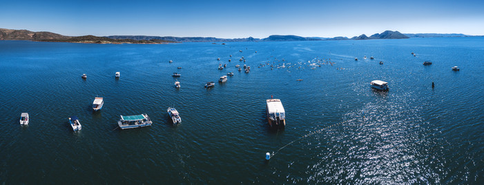 Lake Argyle Swim
