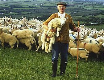 Shopping Cart Shepherds