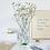 Thumbnail: Vase cylindrique ATLANTIS vert