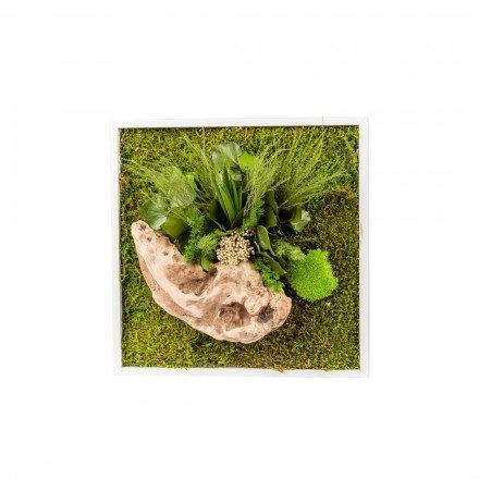 Tableau végétal 35X35cm