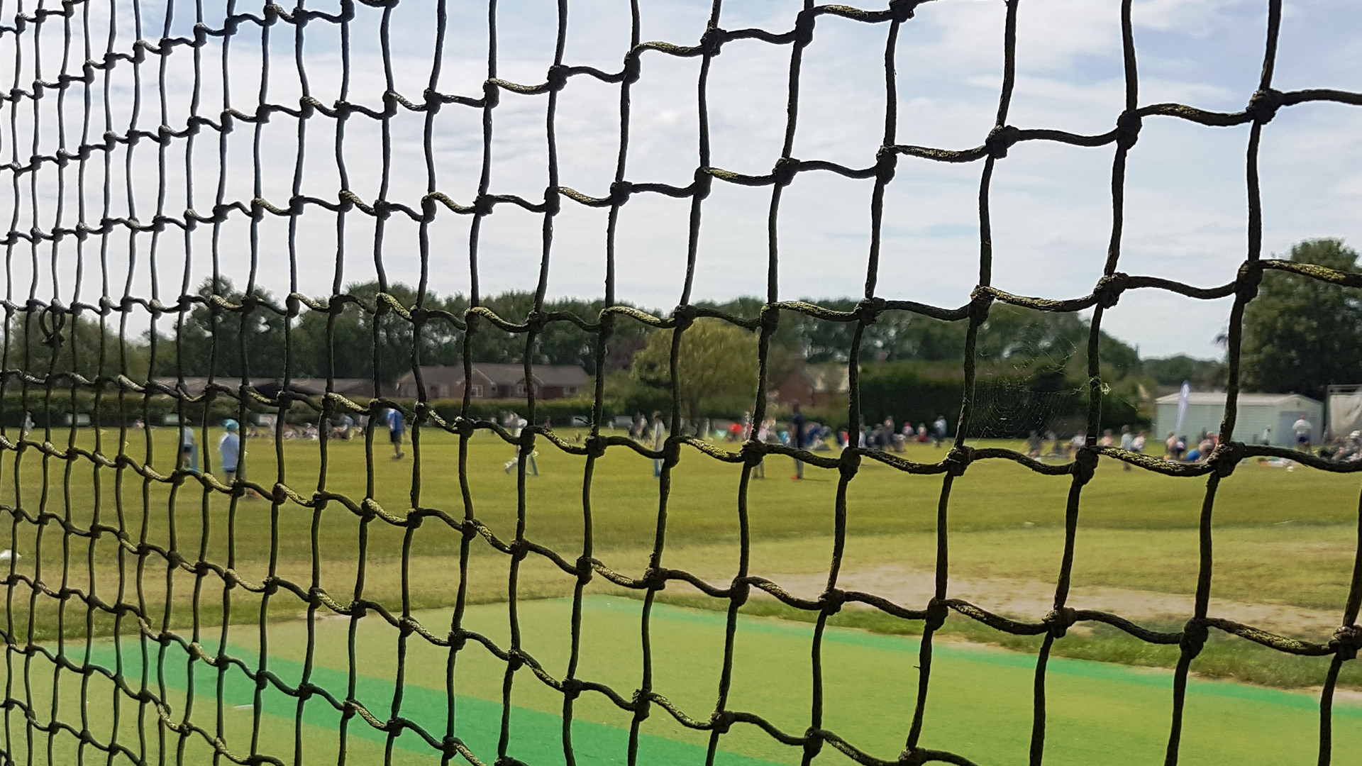 Cricket pitch through net.jpg
