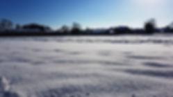Barn meadow in snow.jpg