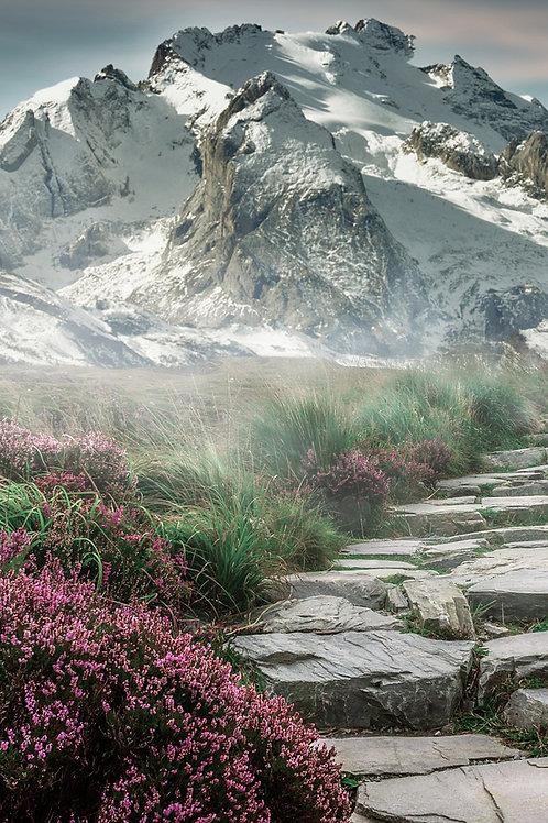 Sfondo viale roccioso