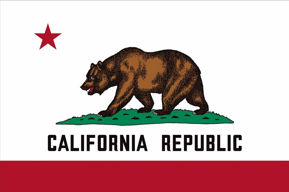 2x3-california-flag-image__69205_edited.