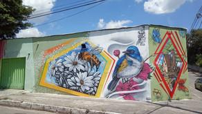 Muros de Justinópolis ganham graffiti do artista Leonardo Snake