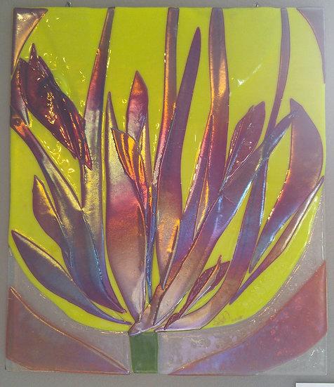 Yellow Variegated Tulip