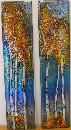 Aspens or Birch