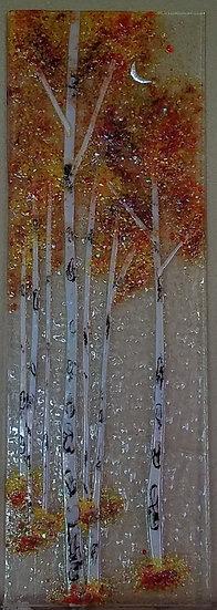 New Moon Birch Forest