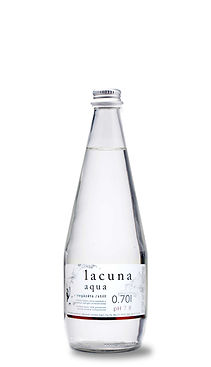 lacuna-0.7-still copy.jpg