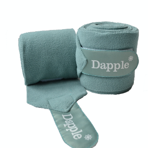 Dapple Teal Bandages