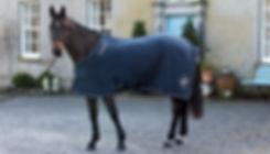 horse blanket.jpg
