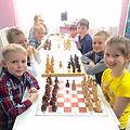 Шахматы Лобня для детей кружок