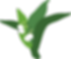lily of the valley transparent.png