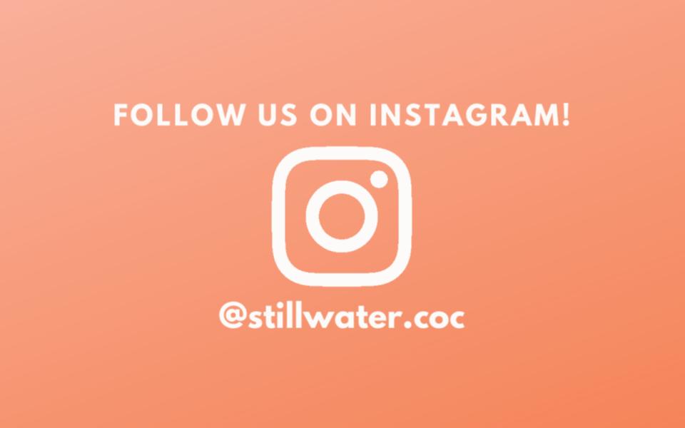 Instagram annoncements slide.png