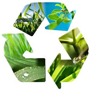 Биоразлагаемые масла, био масло, масло для эко фермеров, экологичные масла, эко масло, экологически чистое масло