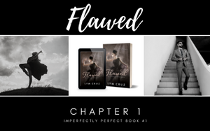 Read the first Chapter of my novel FLAWED