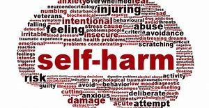 Introduction to self-harm in children and young people