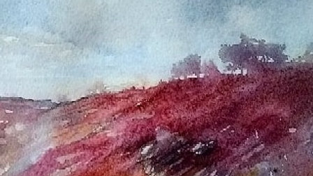 Moorland in red