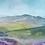 Thumbnail: Ramshaw rocks, moorland in bloom landscape