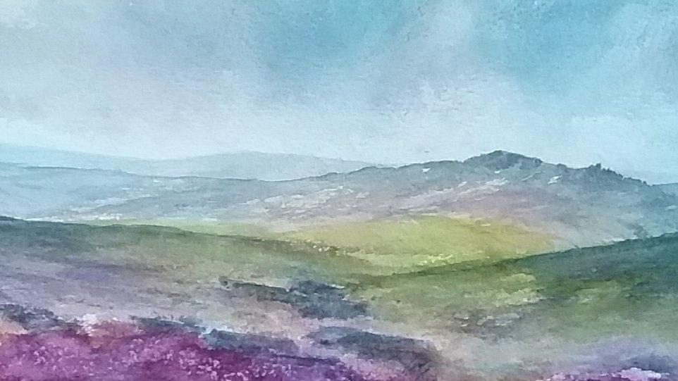 Ramshaw rocks, moorland in bloom landscape