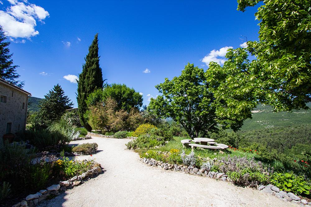 Garden near Le Cyprès