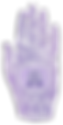 Purplehand_notext_web-01.png