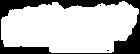 NMS-LogoFinal_Reverse-300x116.png