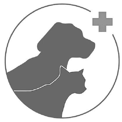 Kurs Pierwsza pomoc dla psów i kotów i profilaktyka weterynaryjna