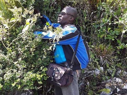 A la recherche de partenaires pour   créer une base de données sur la flore haïtienne