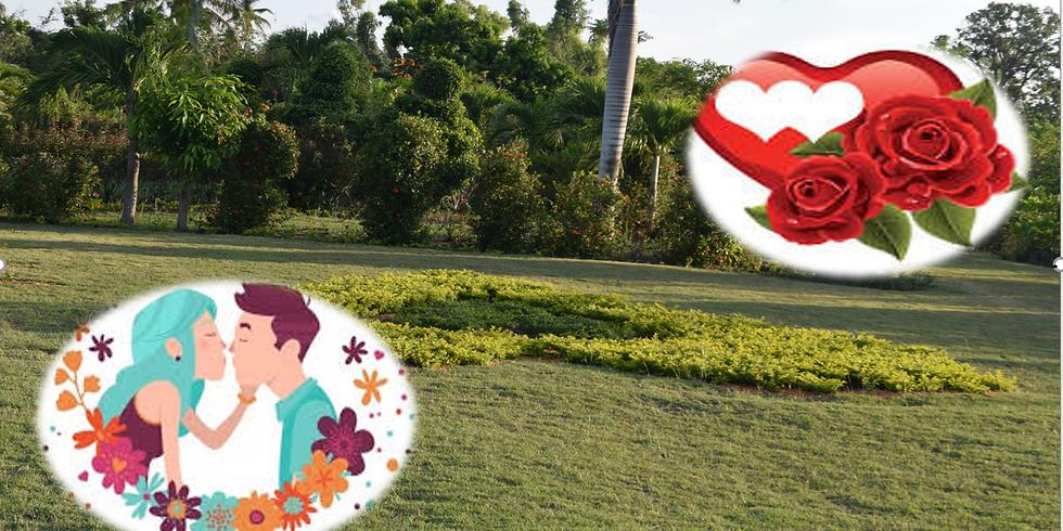 Balade romantique au Jardin
