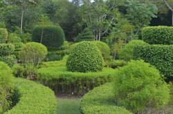 Jardin Botanique des Cayes