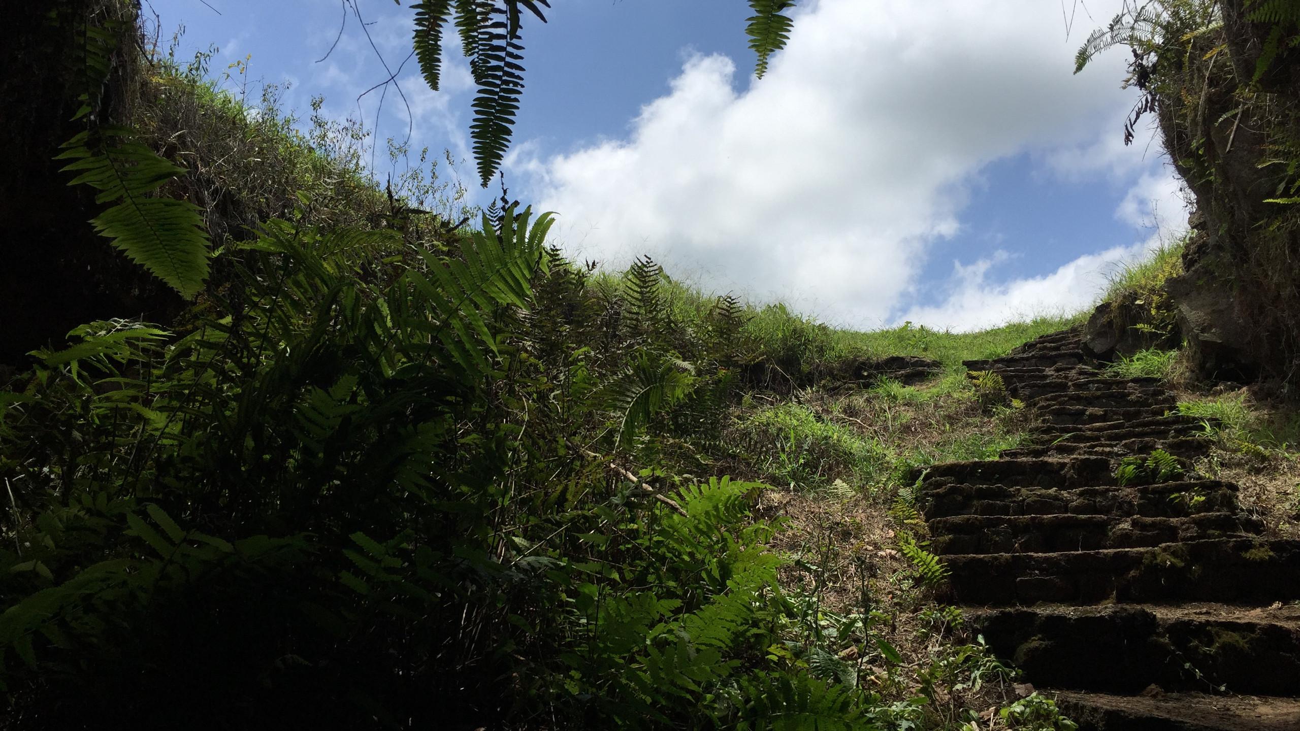 Cueva de Sucre