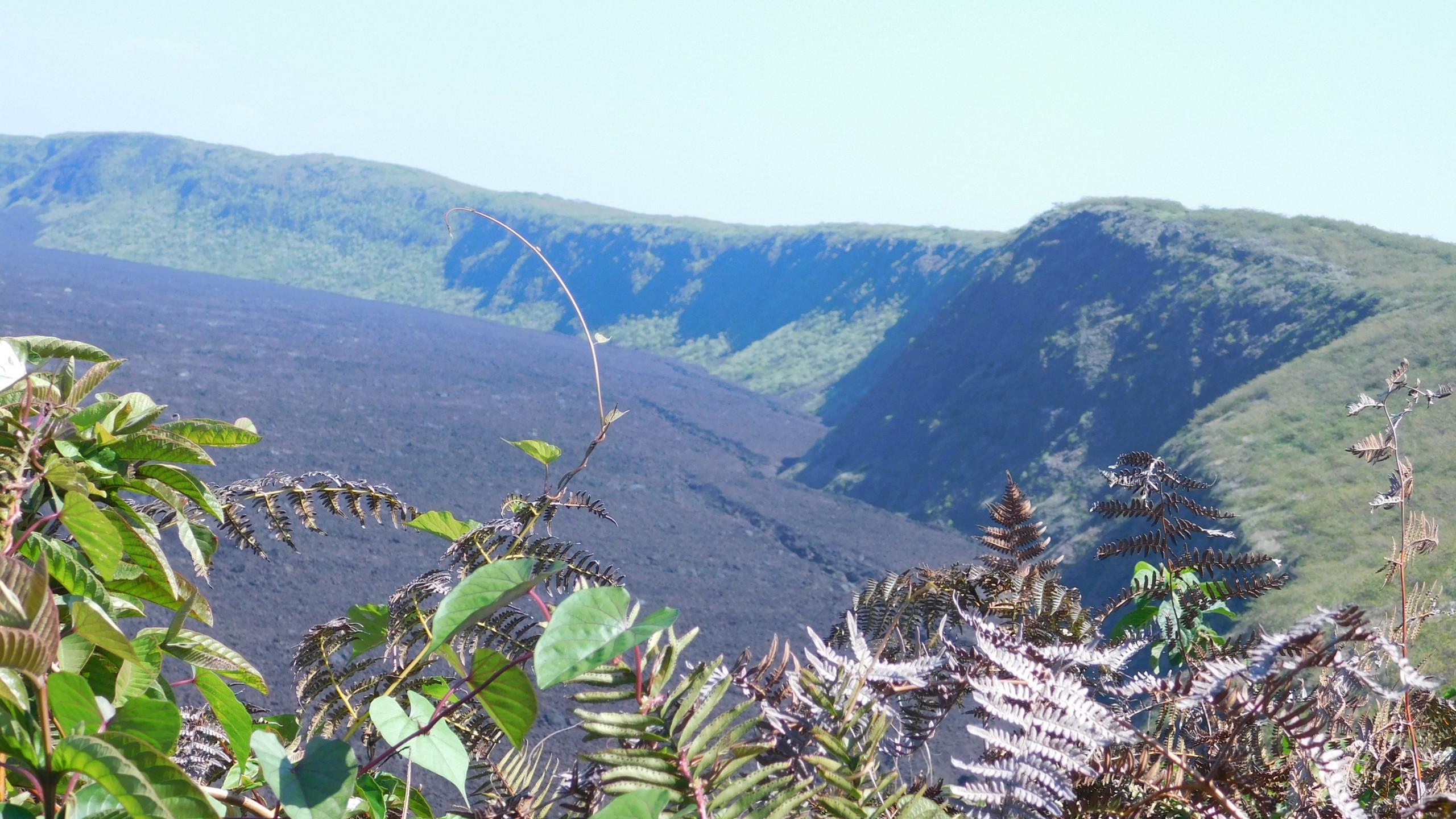 Caldera del Volcán Sierra Negra