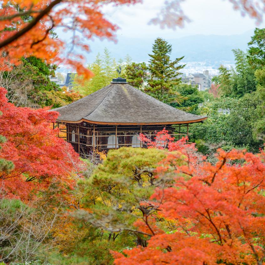 Kioto vestida de otoño