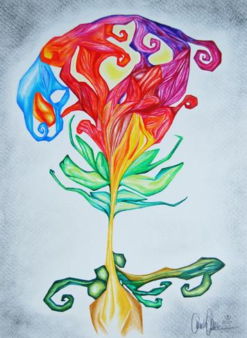 Muschel-Blume