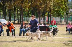 NDS Plovdiv 24 September