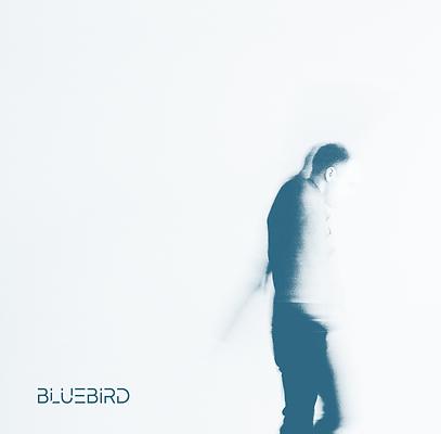 Bluebird Artwork.png