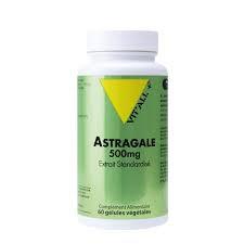 Astragale 500 mg extrait standardisé