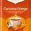 Thumbnail: Yogi Tea Curcuma orange Bio