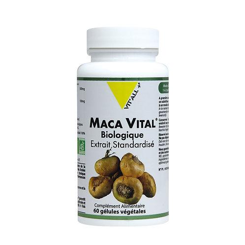Maca vital bio 500 mg extrait standardisé