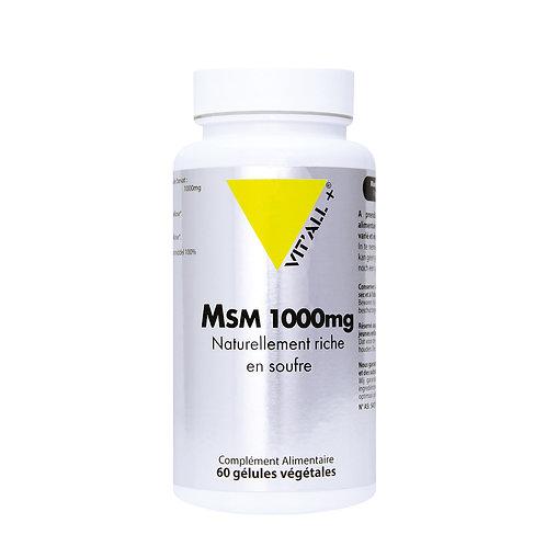 MSM (méthyl-sulfonyl-méthane)