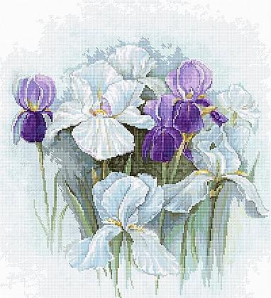 B2367 Irises - Cross Stitch Kit Luca-S