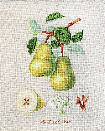 BL22420 The Dauch Pear - Cross Stitch Kit Luca-S
