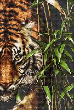 B2356 Tigre